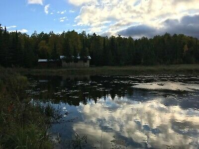 Escape Pandemic! 178 acres, remote survival cabin, cell service Northern Ontario