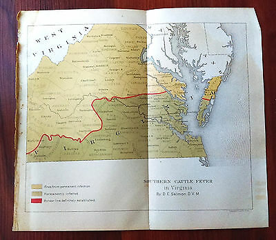 Late 1800's Color Map Showing Cattle Fever in Virginia by D.E. Salmon DVM