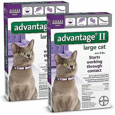 Bayer Advantage II for Cats Over 9 lbs - 12 Pack - NEW