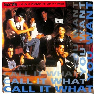 """New Kids On The Block - Call It What You Want - 7"""" Record Single"""
