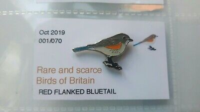RED FLANKED BLUETAIL enamel BIRD pin badge RSPB interest SGW --