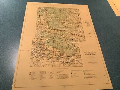 Vintage 1974 Dickerson County Michigan  DNR Highway & Recreation Information Map