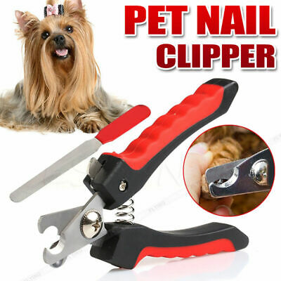 Professional Dog Nail Clipper Stainless Steel Scissors Pet Nail Cutter Dogs Cat