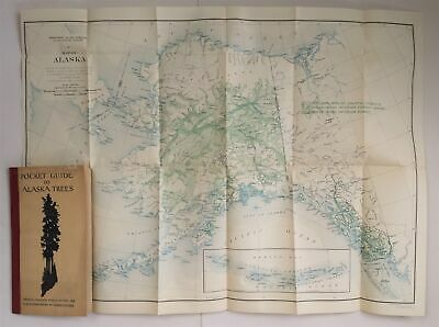 """1929 antique ALASKA 18x24"""" MAP GEOLOGIC GEODETIC RADIO STATIONS in TREES GUIDE"""