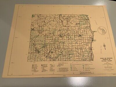 Vintage 1974 Alcona County Michigan DNR Highway & Recreation Information Map