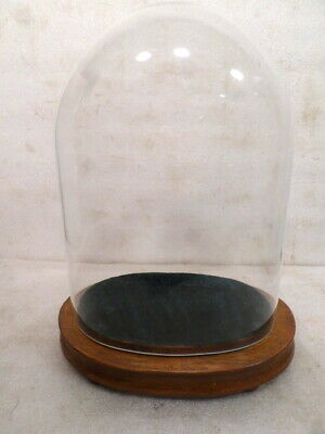 Oval Glass Skeleton Clock Dome With Wooden Base