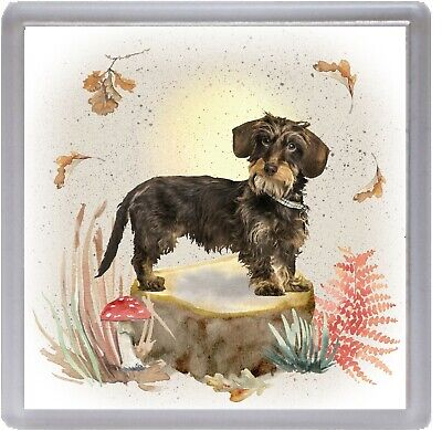 """Blank inside by Starprint Dachshund Wirehaired Dog A6 Christmas Card 4/"""" x 6/"""""""