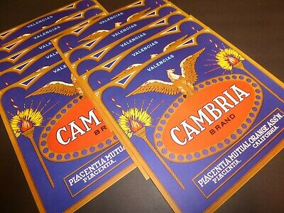 *Original* CAMBRIA Placentia Eagle Torches Lemon Crate Label NOT A COPY!!