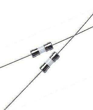 Free shipping 200PCS/LOT 3.6 * 10 Leaded slow down, fuses 3T1.6A 250V, glass