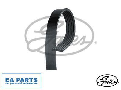 GATES ALTERNATOR//AUXILIARY MICRO-V MULTI-RIBBED BELT 6PK1803
