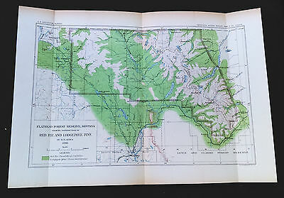 1898 USGS Flathead Forest Reserve Montana Red Fir Longpole Pine Map by Ayers