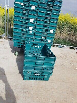 5 x PLASTIC BALE / BAIL ARM TRAY / CRATE / BOX 60-40-20, STORAGE / REMOVAL