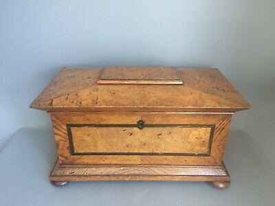 Tea Caddy Large George IV Burr Oak circa 1830 Sarcophagus shape