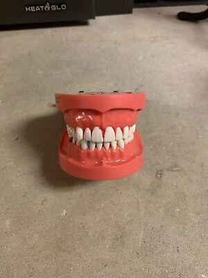 kilgore pro2002-UL-HD-DPM-28 implant typodont. Barely used in pre-clinic