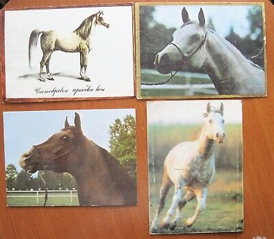 4 Horse Post Cards From Bulgaria