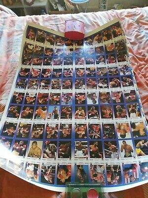 Kayo Boxing Cards Uncut Sheet. Lennox Foreman Etc