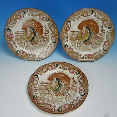 Unmarked Maybe Japan - 3 Colorful Turkey Plates - 10¼ inches
