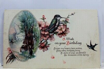 Greetings Wish on Your Birthday Postcard Old Vintage Card View Standard Souvenir