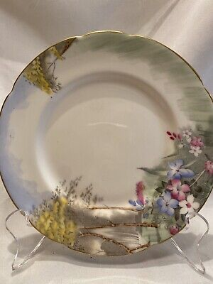 PARAGON BY APPOINTMENT Woodland Bluebell CHINA BREAD & BUTTER PLATE 6 1/8""