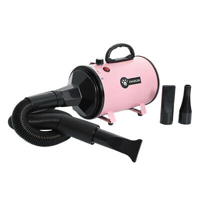 Potente Pet Hair Dryer Blower Governare Asciugatrice con Riscaldatore per Cani e