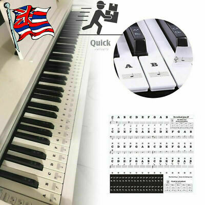 Music Keyboard Piano Stickers Removable For 49, 37,61or 88-KEY Piano Colorful UK