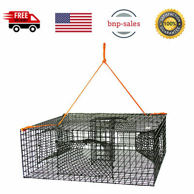 METAL CRAB LOBSTER TRAP SNARE CAGE POT PIER BOAT ROD BEACH SEA FISHING