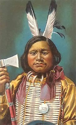 Native American Indian~counted cross stitch pattern #1530~People Western Chart