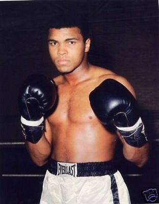 Muhammad Ali Great New Gloves Colour 10x8 Photo