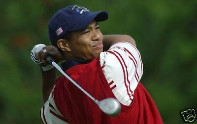 Tiger Woods Golf Legend  10x8 Photo