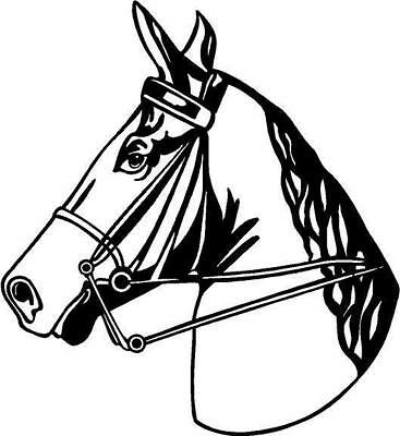Horsehead Large Vinyl Decal Car Truck Trailer RV Signs Window Sticker 2