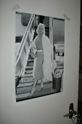 Actress Jayne Mansfield NEW Poster Plane