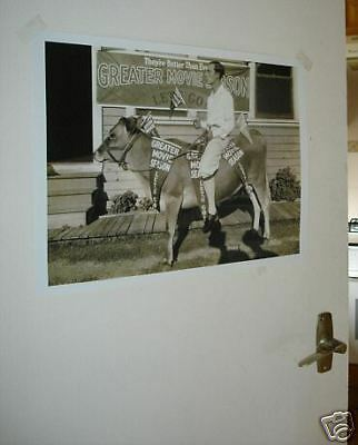 Buster Keaton Poster NEW Cow