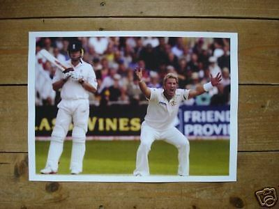 Cricket Legend Shane Warne OUT New Poster
