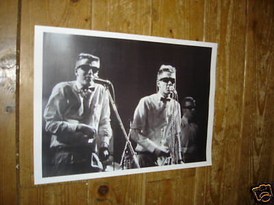 Madness Great New BW POSTER Suggs