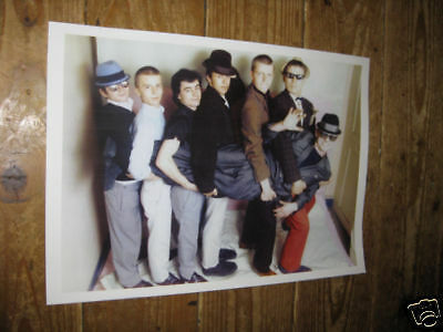 Madness Suggs Super Group POSTER cary
