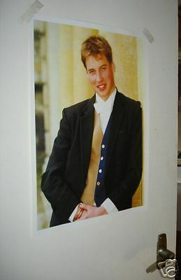 Prince of Wales William Fantastic NEW POSTER