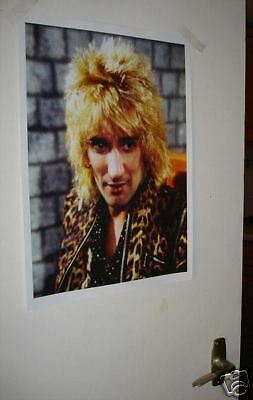 Rod Stewart Colour Door Poster Leopard