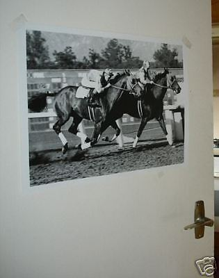 Seabiscuit Horse Racing Legend Poster #1 Run
