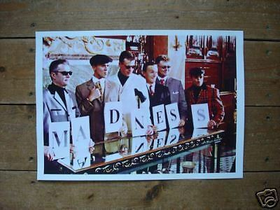 Suggs Madness Fantasic New Poster