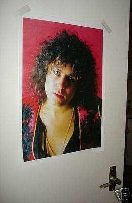 T REX MARC BOLAN POSTER Stare