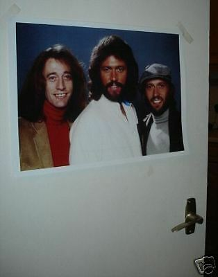 The Bee Gees Colour Door Poster #1 wht