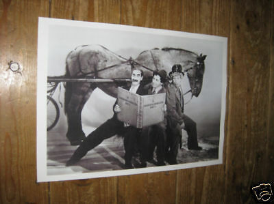 The Marx Brothers Day at the Races  Horse POSTER
