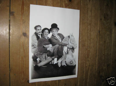 The Marx Brothers Day at the Races  Horse POSTER Toy