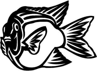Garibaldi Fish Vinyl Decal Car Truck  Window Sticker 10