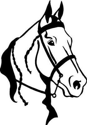 Gaited Horse Head Vinyl Decal Car Truck Window Sticker