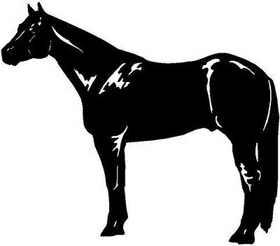 Quarter Horse Vinyl Decal Car Truck Window Sticker