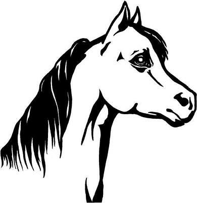 Horse Head Large Vinyl Decal Car Truck Window Sticker