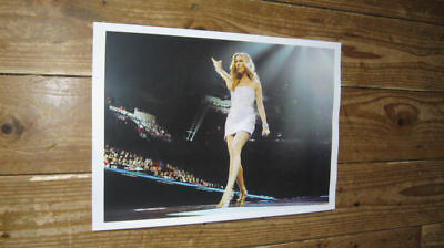 Celine Dion New Live on Stage Point POSTER