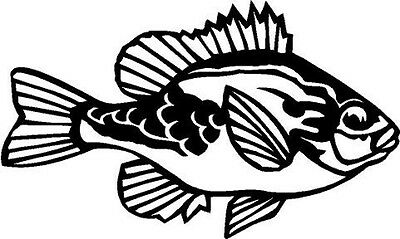 Pumpkin Seed Fish Vinyl Decal Car Truck Boat RV Bike Wall Signs Window Sticker
