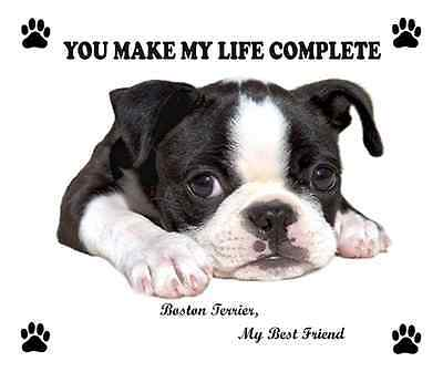 So Cute Funny Boston Terrier Face Dog Puppy Computer Mousepad Mat New